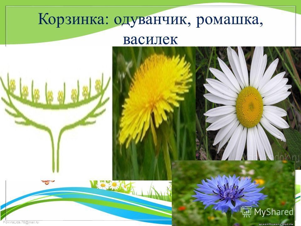 FokinaLida.75@mail.ru Корзинка: одуванчик, ромашка, василек
