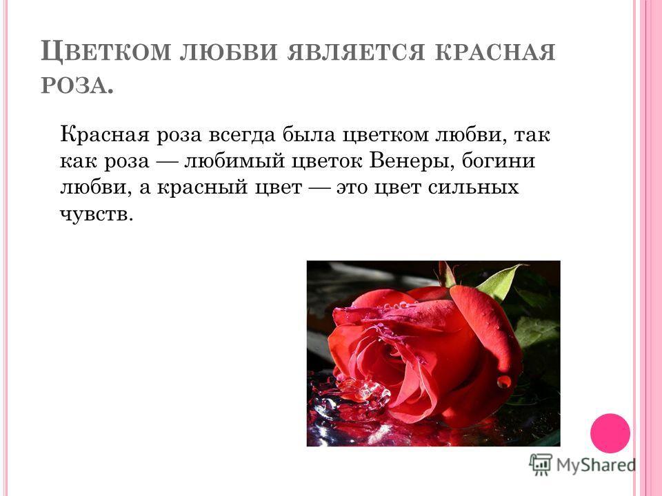 Цветок венеры богини