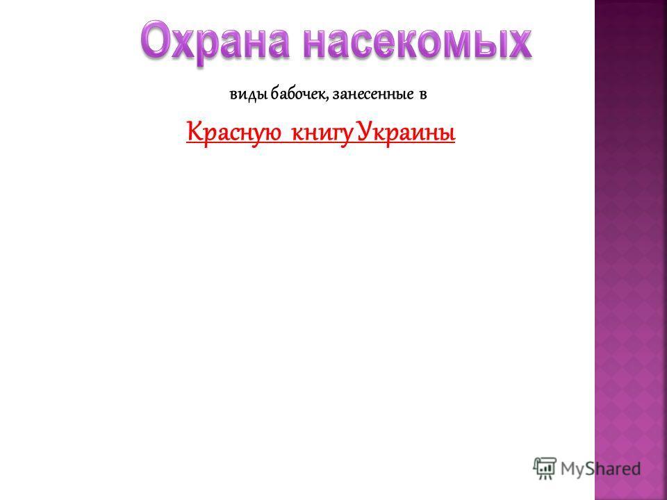 виды бабочек, занесенные в Красную книгу Украины