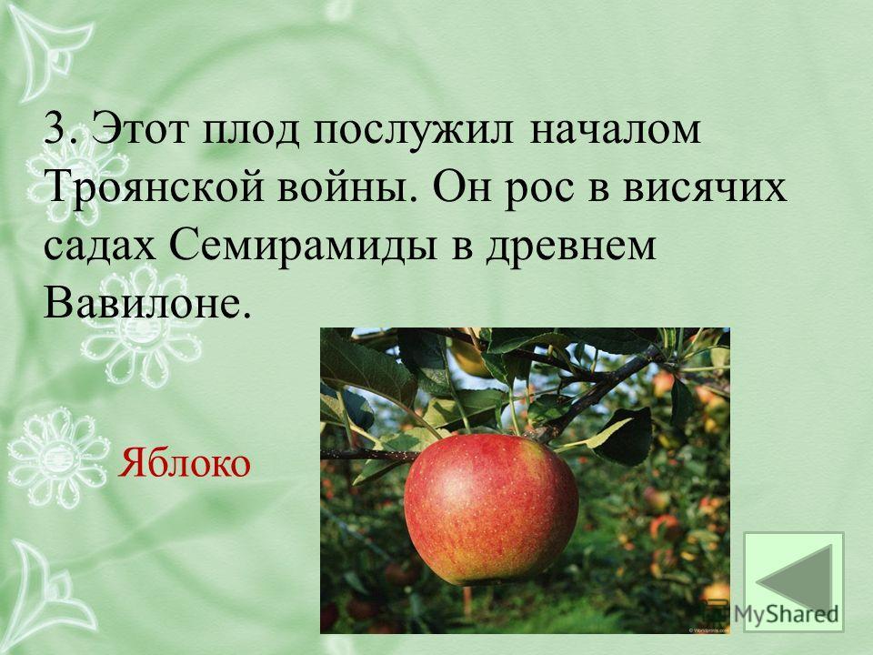 3. Этот плод послужил началом Троянской войны. Он рос в висячих садах Семирамиды в древнем Вавилоне. Яблоко