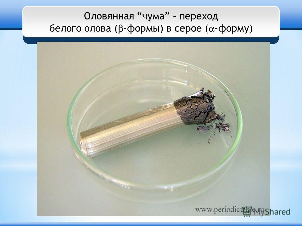 Оловянная чума – переход белого олова ( -формы) в серое ( -форму)