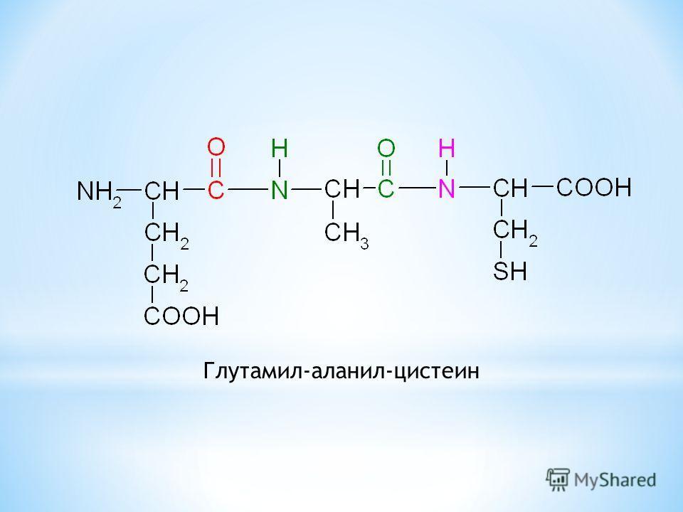 Глутамил-аланил-цистеин