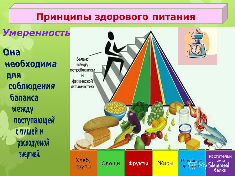 Овощи Фрукты Жиры Хлеб, крупы Растительн ые и животные белки Молочные продукты Принципы здорового питания Умеренность