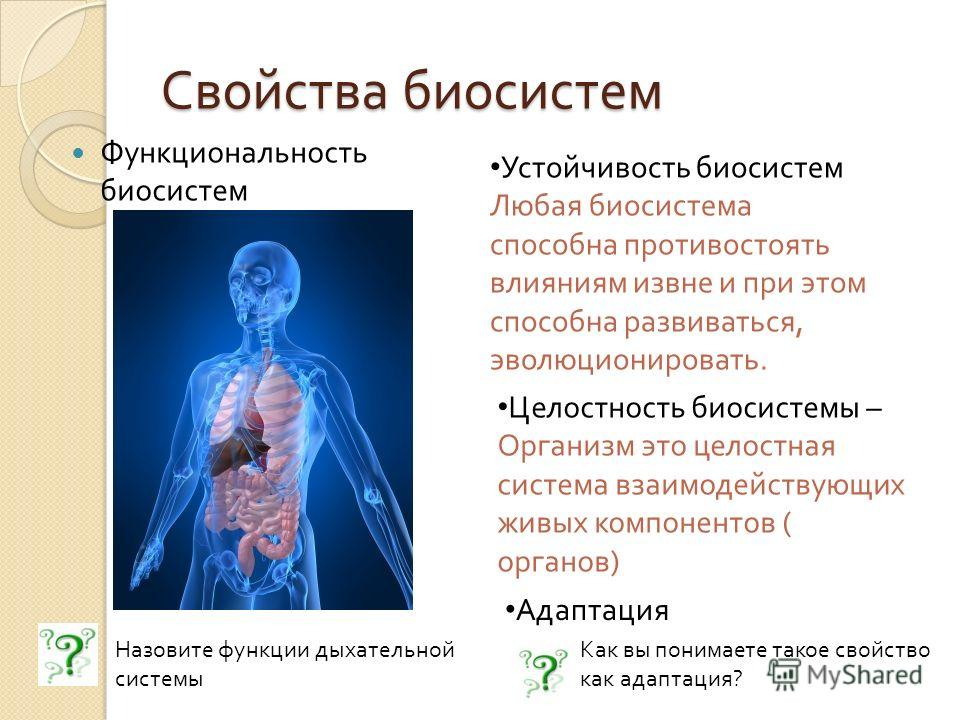 Свойства биосистем Функциональность биосистем Назовите функции дыхательной системы Устойчивость биосистем Любая биосистема способна противостоять влияниям извне и при этом способна развиваться, эволюционировать. Целостность биосистемы – Организм это