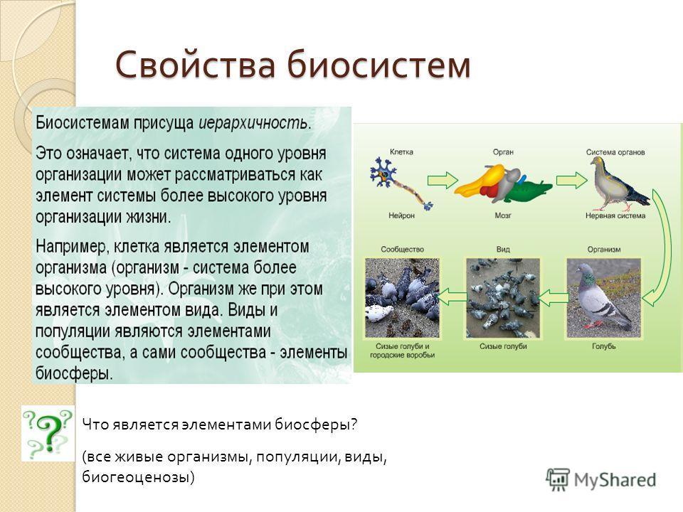 Свойства биосистем Что является элементами биосферы? (все живые организмы, популяции, виды, биогеоценозы)
