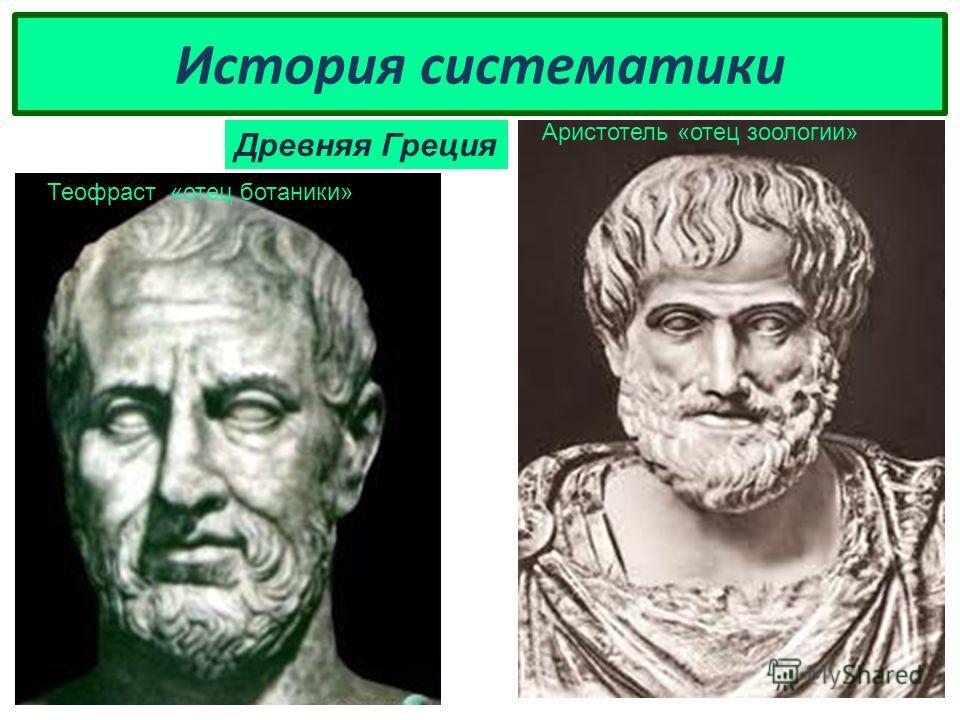 История систематики Древняя Греция Теофраст «отец ботаники» Аристотель «отец зоологии»