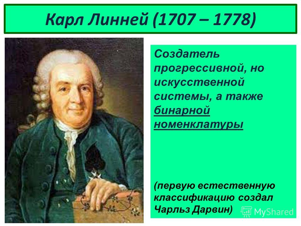 Карл Линней (1707 – 1778) Создатель прогрессивной, но искусственной системы, а также бинарной номенклатуры (первую естественную классификацию создал Чарльз Дарвин)