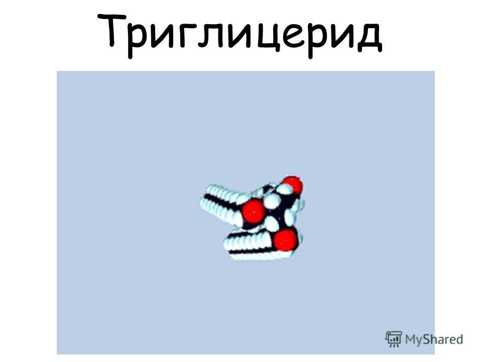 Триглицерид Q0235301
