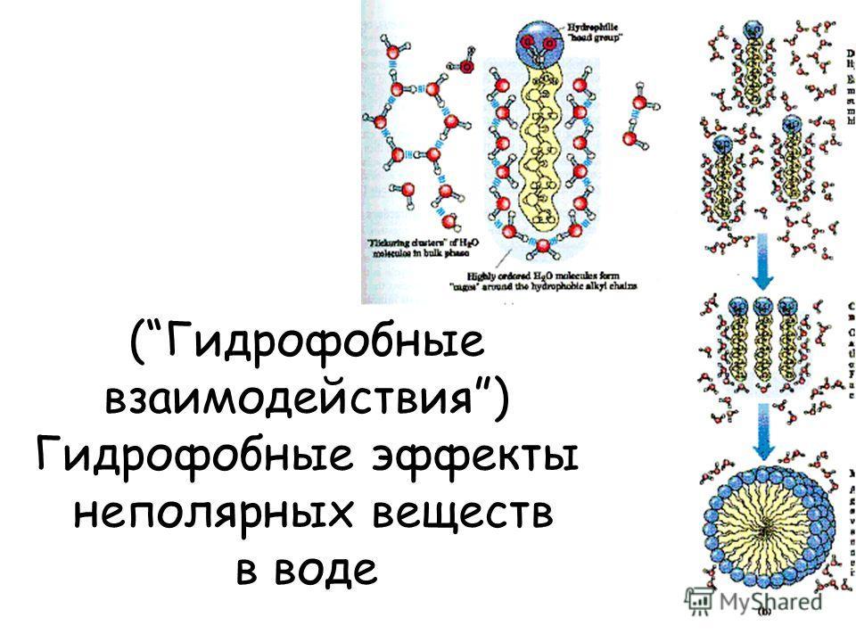 (Гидрофобные взаимодействия) Гидрофобные эффекты неполярных веществ в воде
