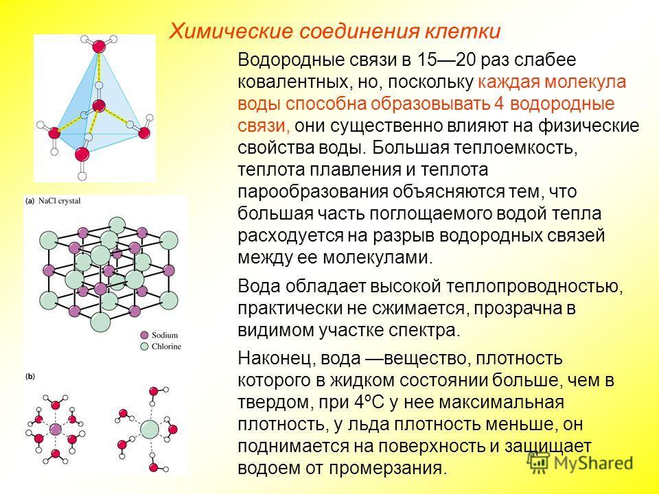 Химические соединения клетки Водородные связи в 1520 раз слабее ковалентных, но, поскольку каждая молекула воды способна образовывать 4 водородные связи, они существенно влияют на физические свойства воды. Большая теплоемкость, теплота плавления и те