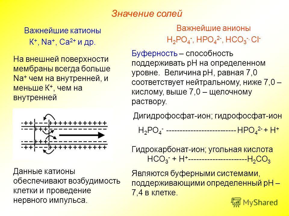 Значение солей Важнейшие анионы Н 2 РО 4 -, НРО 4 2-, НСО 3 -, Сl - Важнейшие катионы К +, Na +, Ca 2+ и др. Данные катионы обеспечивают возбудимость клетки и проведение нервного импульса. Буферность – способность поддерживать рН на определенном уров
