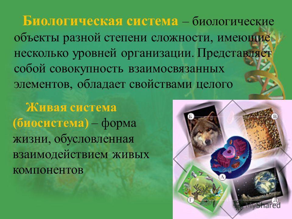 Биологическая система – биологические объекты разной степени сложности, имеющие несколько уровней организации. Представляет собой совокупность взаимосвязанных элементов, обладает свойствами целого Живая система (биосистема) – форма жизни, обусловленн