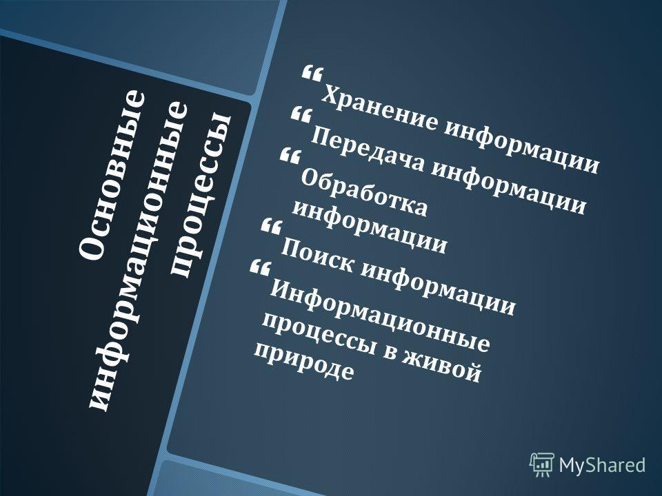 Основные информационные процессы Хранение информации Передача информации Обработка информации Поиск информации Информационные процессы в живой природе