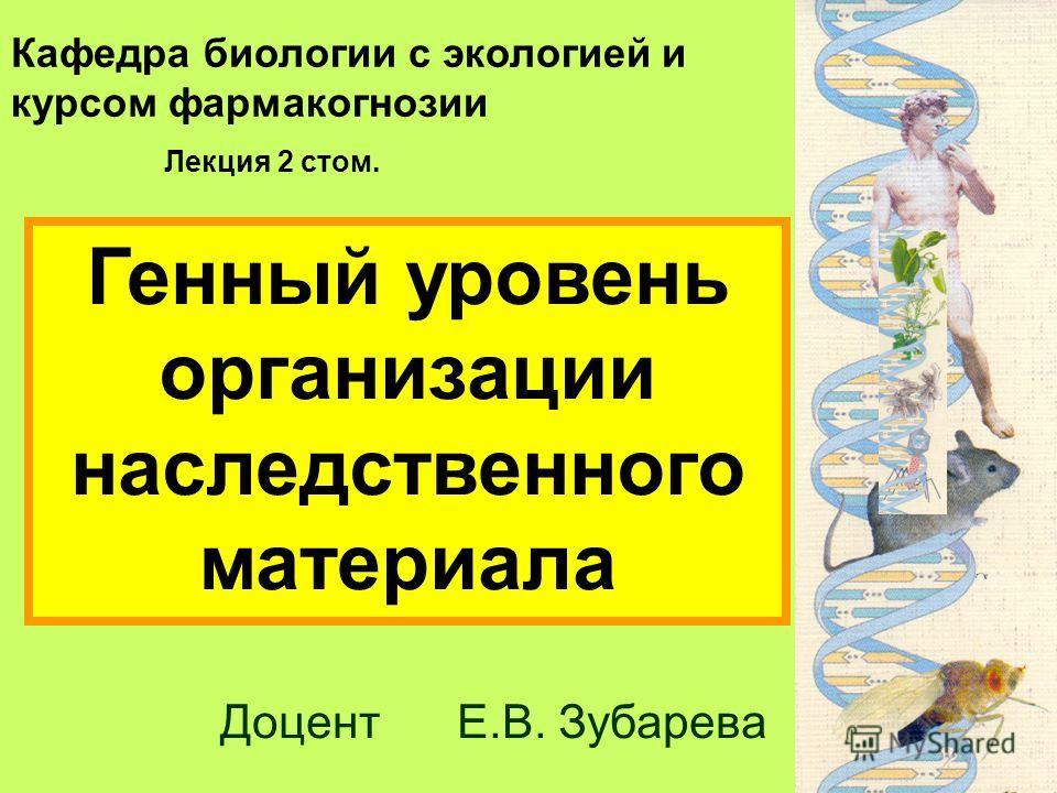 Кафедра биологии с экологией и курсом фармакогнозии Доцент Е.В. Зубарева Лекция 2 стом. Генный уровень организации наследственного материала