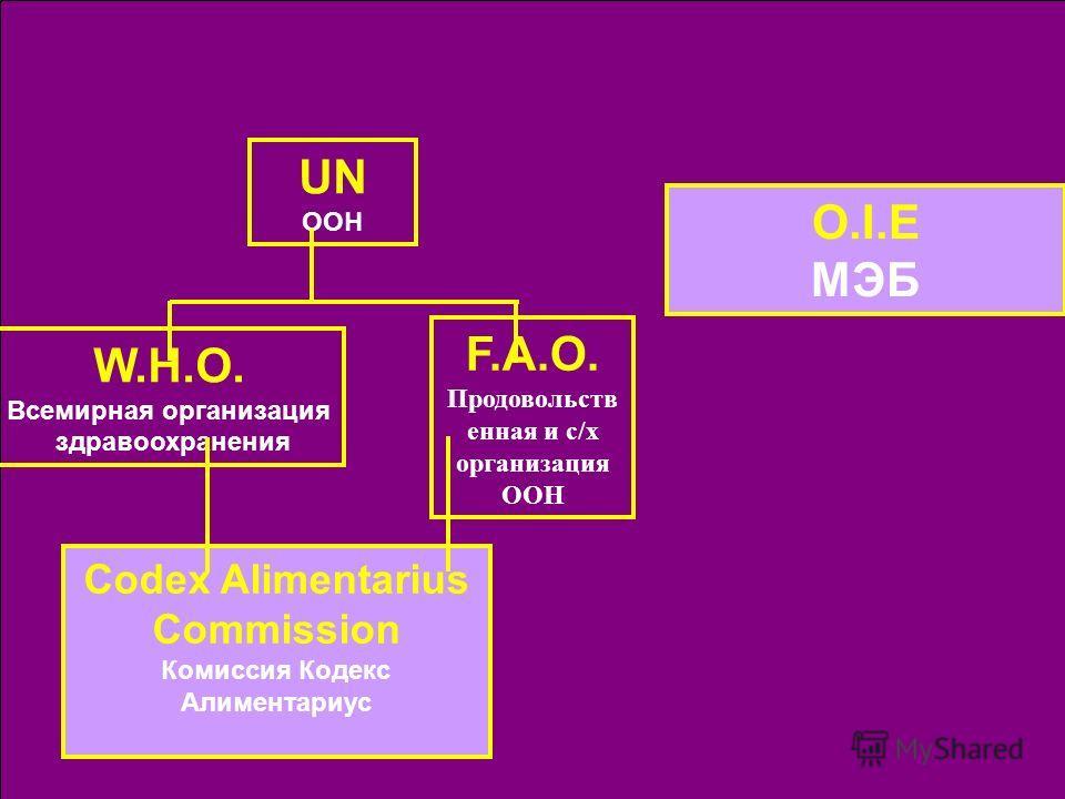 UN ООН O.I.E МЭБ F.A.O. Продовольств енная и с/х организация ООН W.H.O. Всемирная организация здравоохранения Codex Alimentarius Commission Комиссия Кодекс Алиментариус
