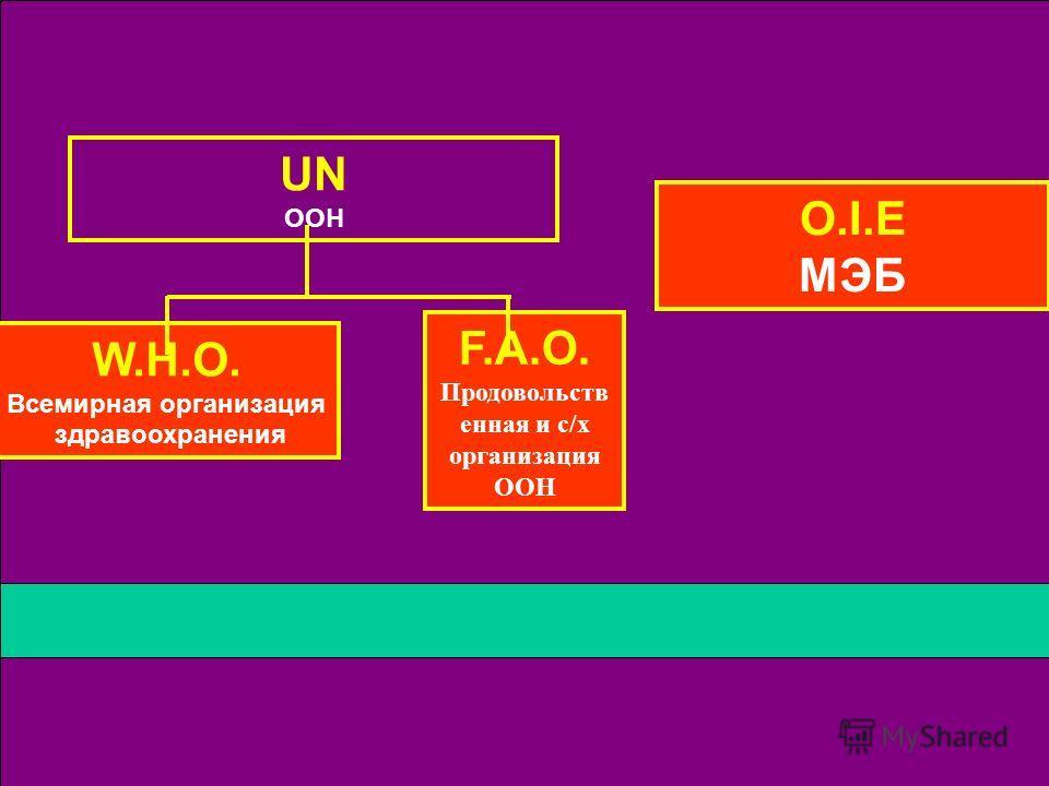 UN ООН O.I.E МЭБ F.A.O. Продовольств енная и с/х организация ООН W.H.O. Всемирная организация здравоохранения