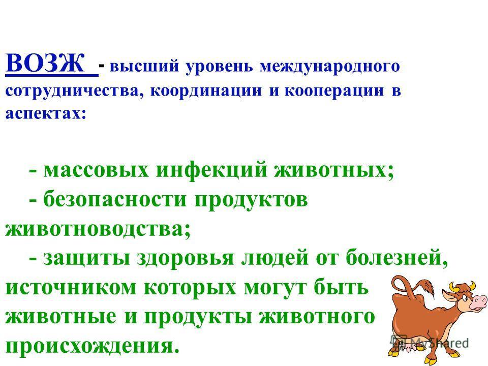 ВОЗЖ - высший уровень международного сотрудничества, координации и кооперации в аспектах: - массовых инфекций животных; - безопасности продуктов животноводства; - защиты здоровья людей от болезней, источником которых могут быть животные и продукты жи