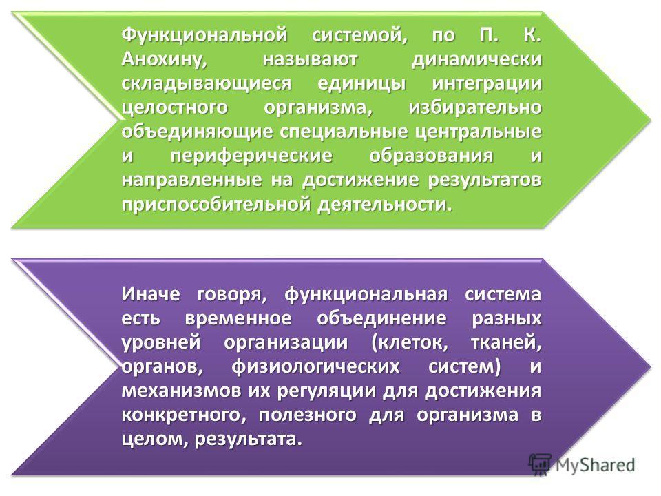 Функциональной системой, по П. К. Анохину, называют динамически складывающиеся единицы интеграции целостного организма, избирательно объединяющие специальные центральные и периферические образования и направленные на достижение результатов приспособи