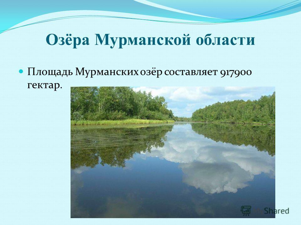 Озёра Мурманской области Площадь Мурманских озёр составляет 917900 гектар.