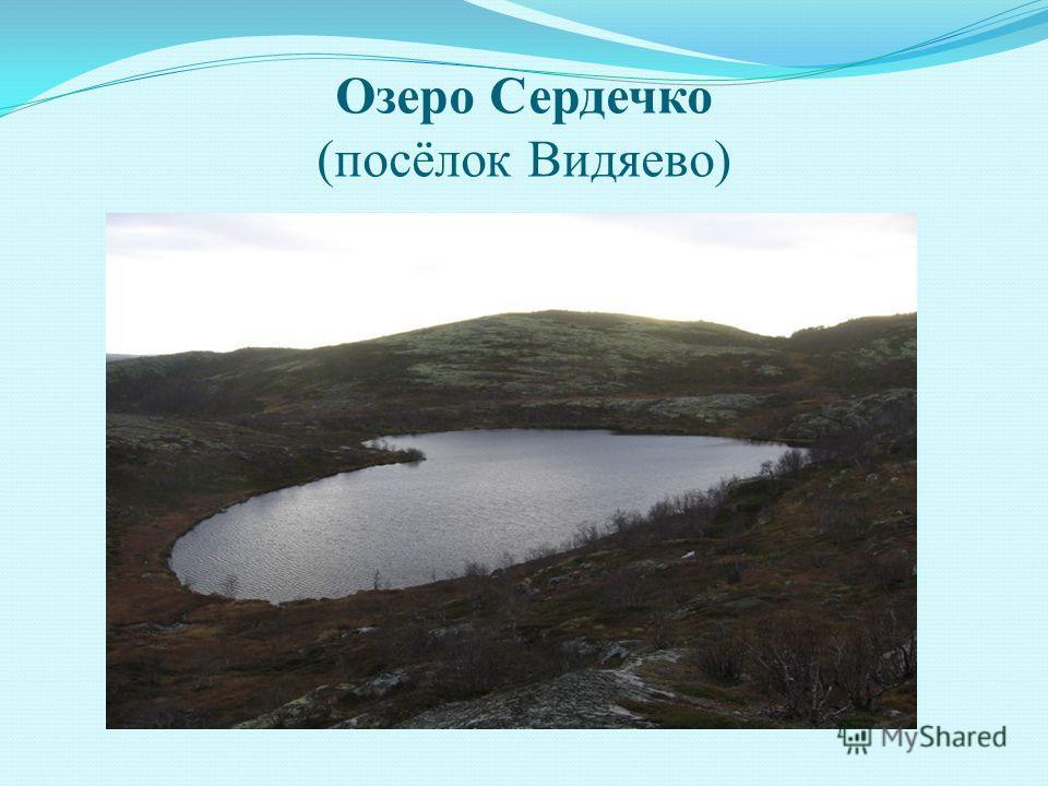 Озеро Сердечко (посёлок Видяево)