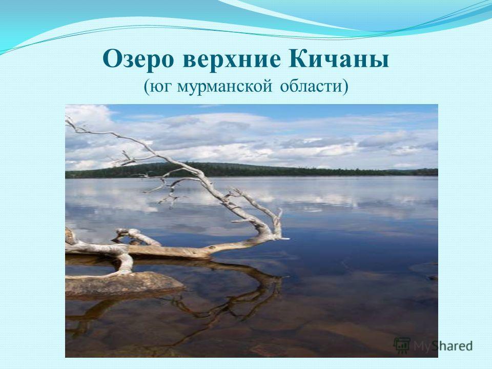 Озеро верхние Кичаны (юг мурманской области)