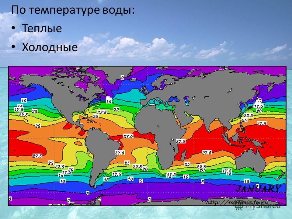 По температуре воды: Теплые Холодные