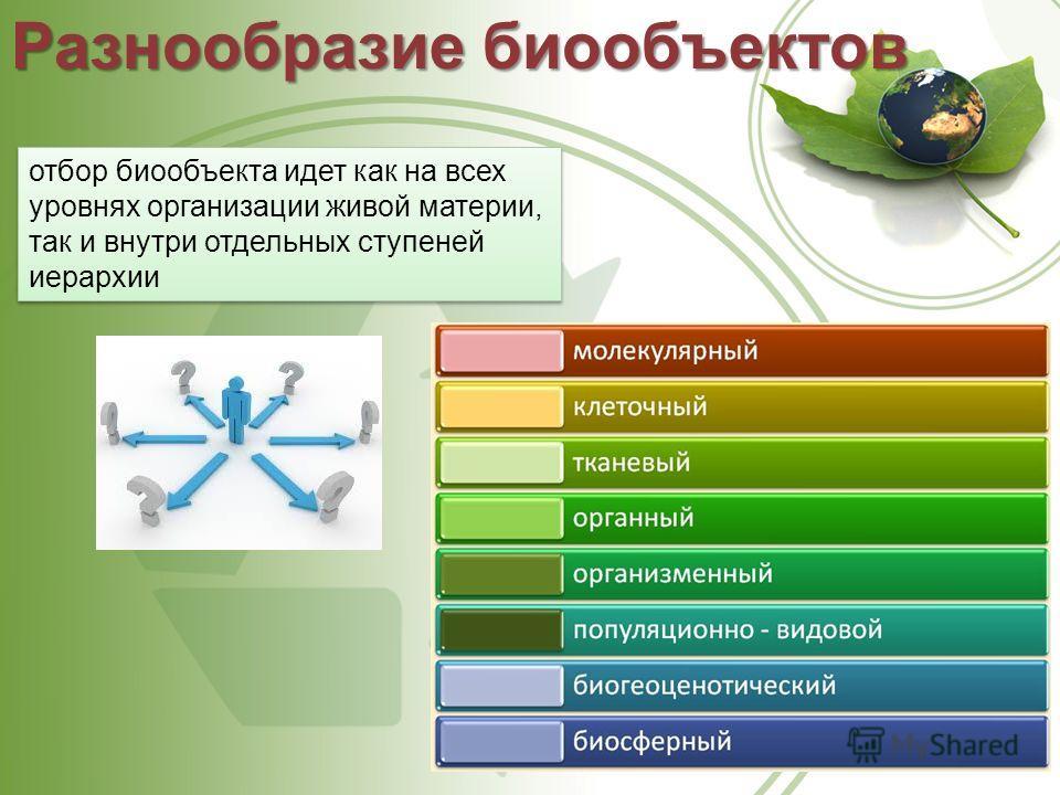 отбор биообъекта идет как на всех уровнях организации живой материи, так и внутри отдельных ступеней иерархии Разнообразие биообъектов