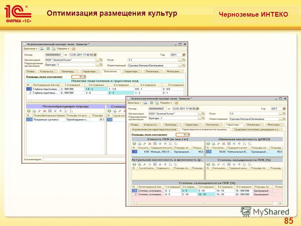 85 Оптимизация размещения культур Черноземье ИНТЕКО