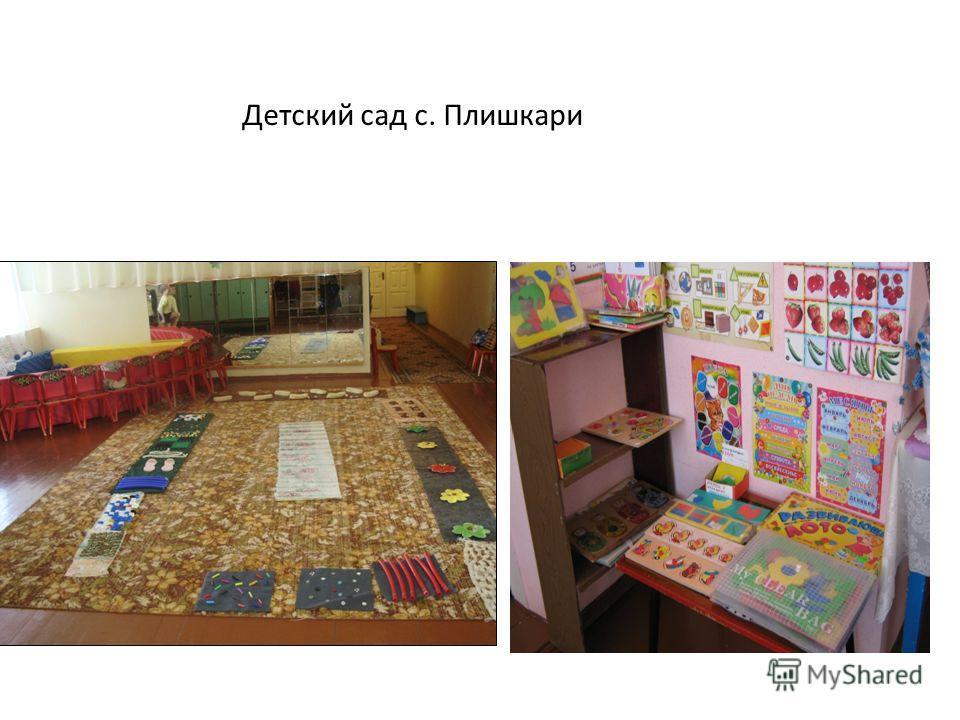 Детский сад с. Плишкари