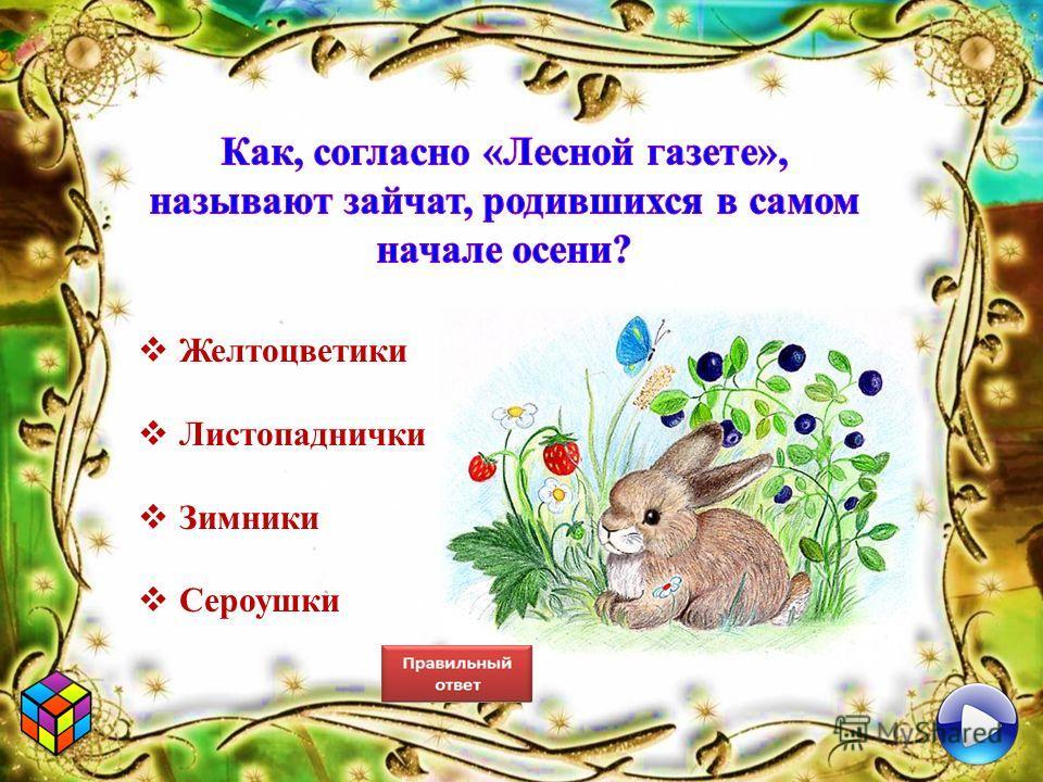 Желтоцветики Листопаднички Зимники Сероушки