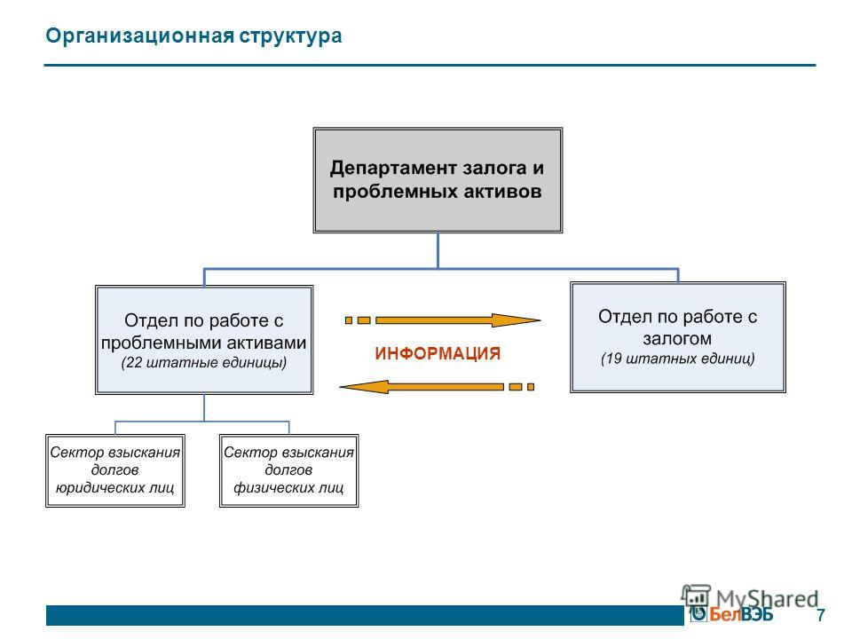 Организационная структура 7 ИНФОРМАЦИЯ