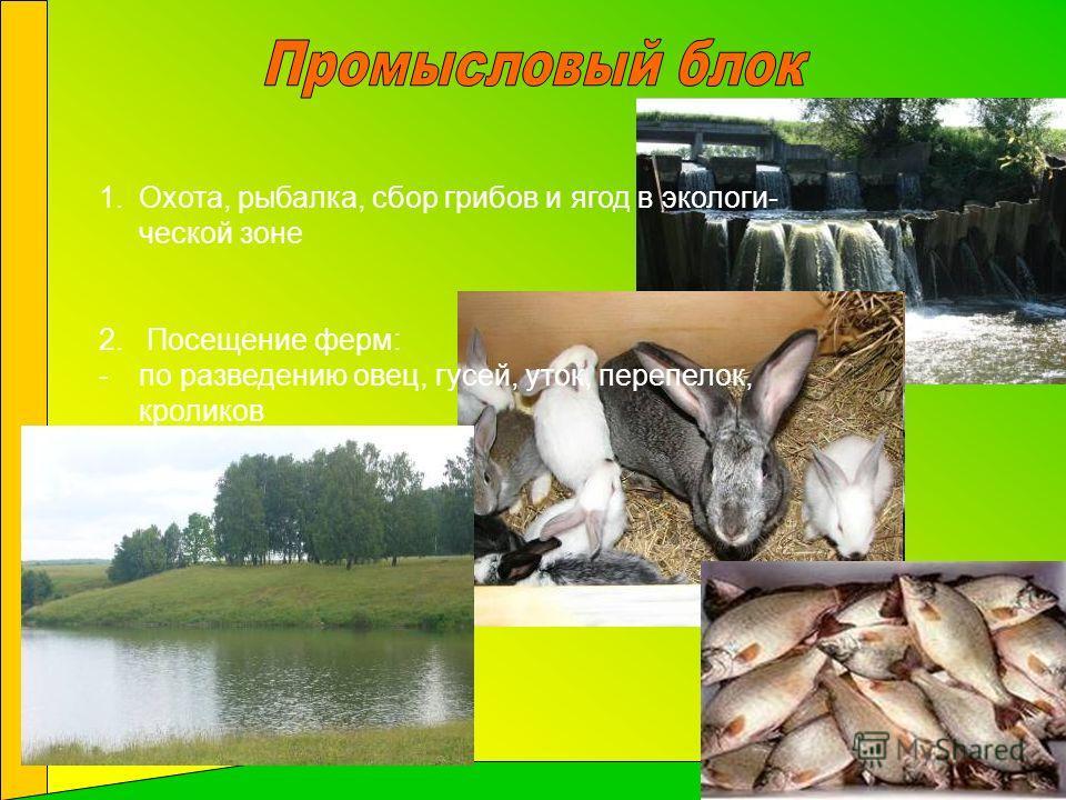 1.Охота, рыбалка, сбор грибов и ягод в экологи- ческой зоне 2. Посещение ферм: -по разведению овец, гусей, уток, перепелок, кроликов