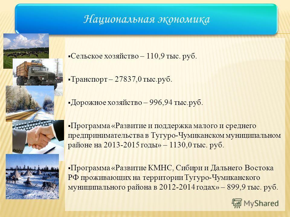 Сельское хозяйство – 110,9 тыс. руб. Транспорт – 27837,0 тыс.руб. Дорожное хозяйство – 996,94 тыс.руб. Программа «Развитие и поддержка малого и среднего предпринимательства в Тугуро-Чумиканском муниципальном районе на 2013-2015 годы» – 1130,0 тыс. ру
