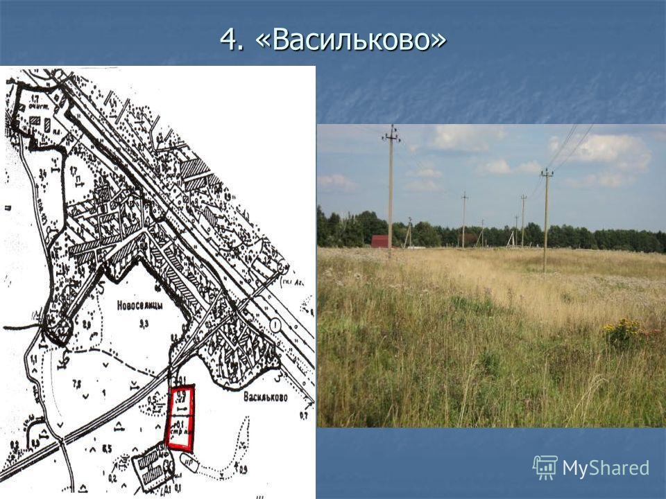 4. «Васильково»