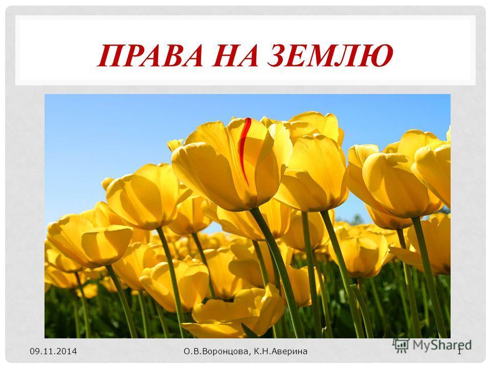 ПРАВА НА ЗЕМЛЮ 09.11.2014О.В.Воронцова, К.Н.Аверина 1