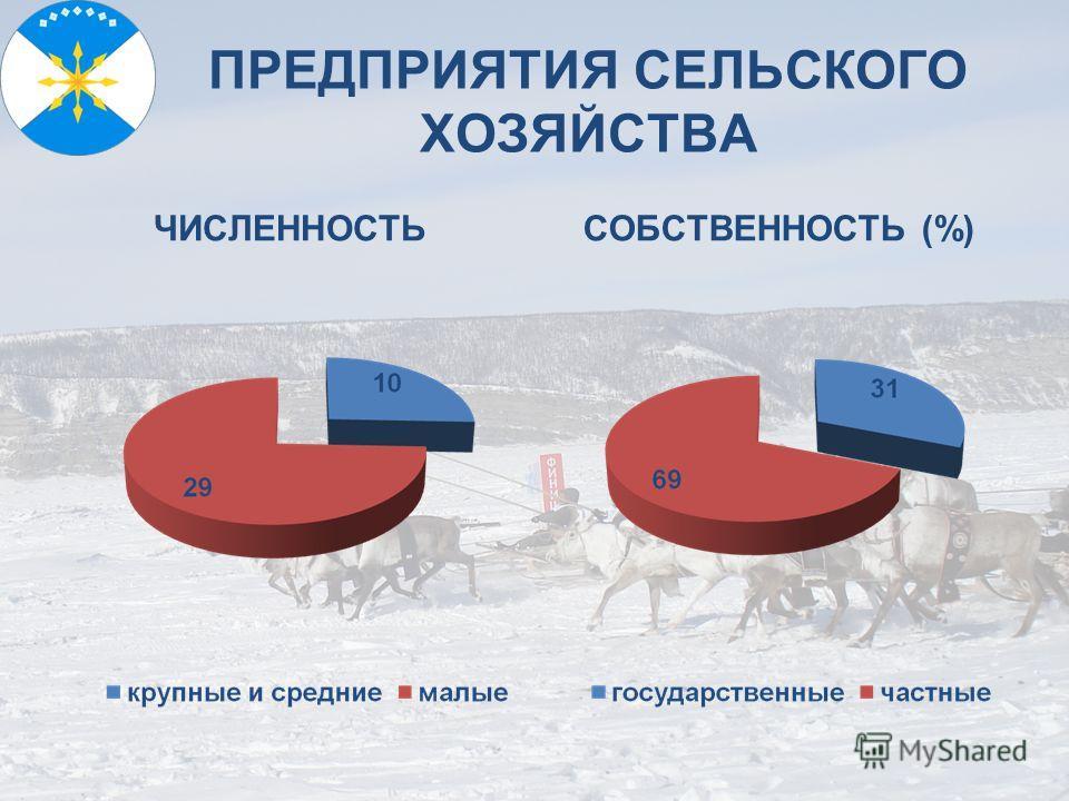 ПРЕДПРИЯТИЯ СЕЛЬСКОГО ХОЗЯЙСТВА ЧИСЛЕННОСТЬСОБСТВЕННОСТЬ (%)