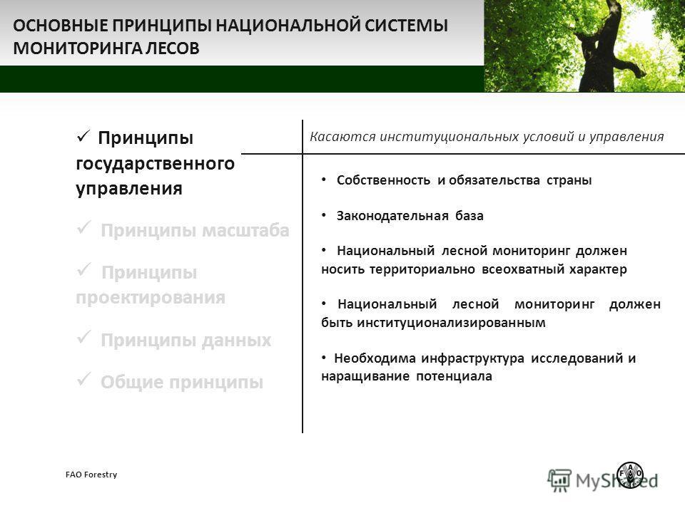 z FAO Forestry Принципы государственного управления Принципы масштаба Принципы проектирования Принципы данных Общие принципы Собственность и обязательства страны Законодательная база Национальный лесной мониторинг должен носить территориально всеохва