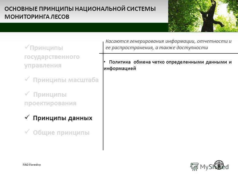 z FAO Forestry Принципы государственного управления Принципы масштаба Принципы проектирования Принципы данных Общие принципы Касаются генерирования информации, отчетности и ее распространения, а также доступности Политика обмена четко определенными д