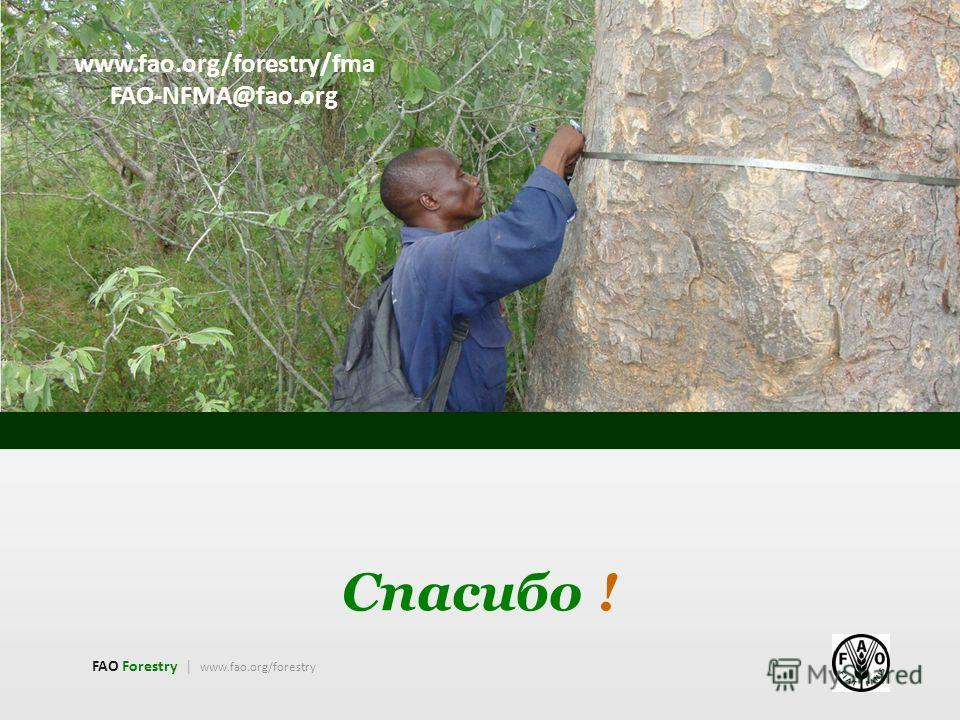 Спасибо ! FAO Forestry | www.fao.org/forestry www.fao.org/forestry/fma FAO-NFMA@fao.org