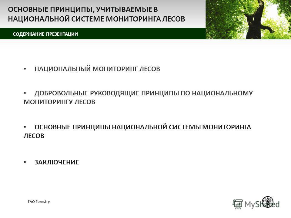 z СОДЕРЖАНИЕ ПРЕЗЕНТАЦИИ FAO Forestry НАЦИОНАЛЬНЫЙ МОНИТОРИНГ ЛЕСОВ ДОБРОВОЛЬНЫЕ РУКОВОДЯЩИЕ ПРИНЦИПЫ ПО НАЦИОНАЛЬНОМУ МОНИТОРИНГУ ЛЕСОВ ОСНОВНЫЕ ПРИНЦИПЫ НАЦИОНАЛЬНОЙ СИСТЕМЫ МОНИТОРИНГА ЛЕСОВ ЗАКЛЮЧЕНИЕ ОСНОВНЫЕ ПРИНЦИПЫ, УЧИТЫВАЕМЫЕ В НАЦИОНАЛЬНОЙ