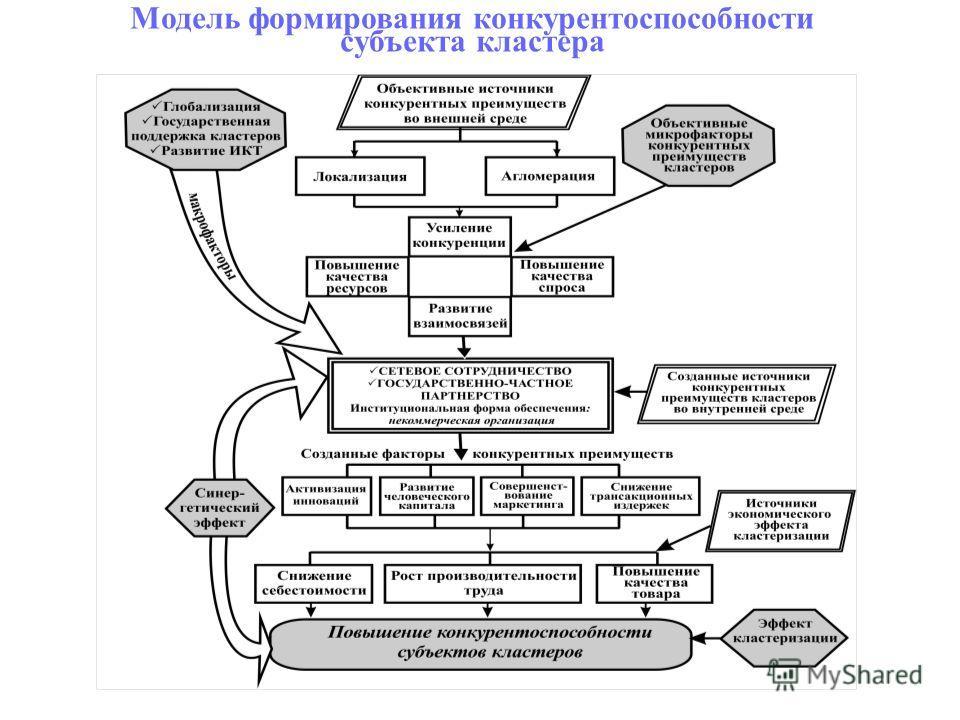 Модель формирования конкурентоспособности субъекта кластера