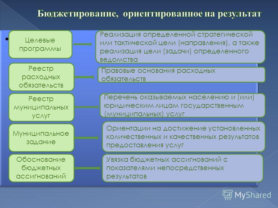 про Целевые программы Реализация определенной стратегической или тактической цели (направления), а также реализация цели (задачи) определенного ведомства Реестр расходных обязательств Реестр муниципальных услуг Муниципальное задание Обоснование бюдже