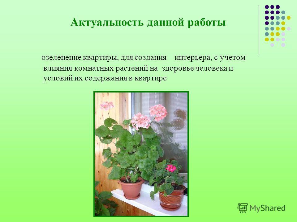 Актуальность данной работы озеленение квартиры, для создания интерьера, с учетом влияния комнатных растений на здоровье человека и условий их содержания в квартире