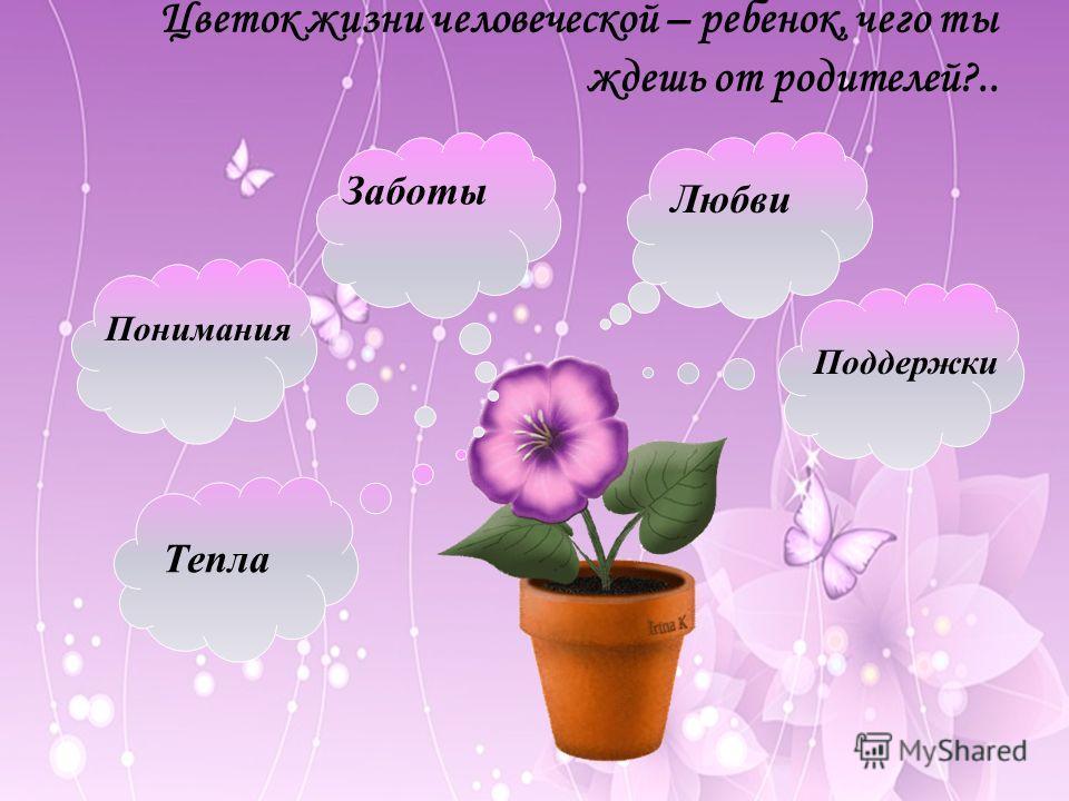 Цветок жизни человеческой – ребенок, чего ты ждешь от родителей?.. Любви Заботы Понимания Тепла Поддержки