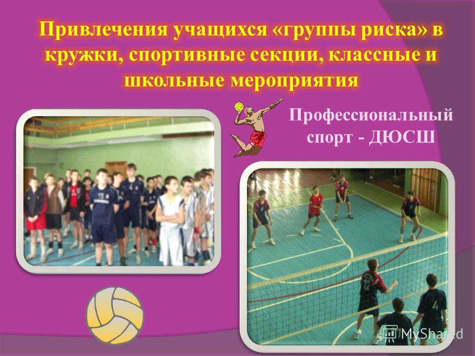 Профессиональный спорт - ДЮСШ