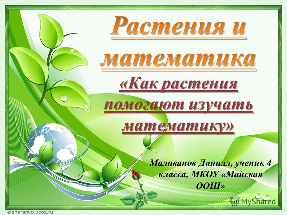 Маливанов Данилл, ученик 4 класса, МКОУ «Майская ООШ»