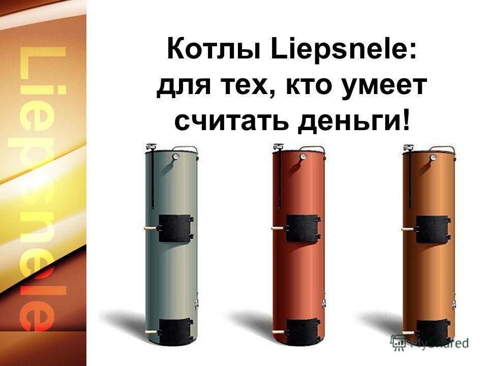 Котлы Liepsnele: для тех, кто умеет считать деньги!