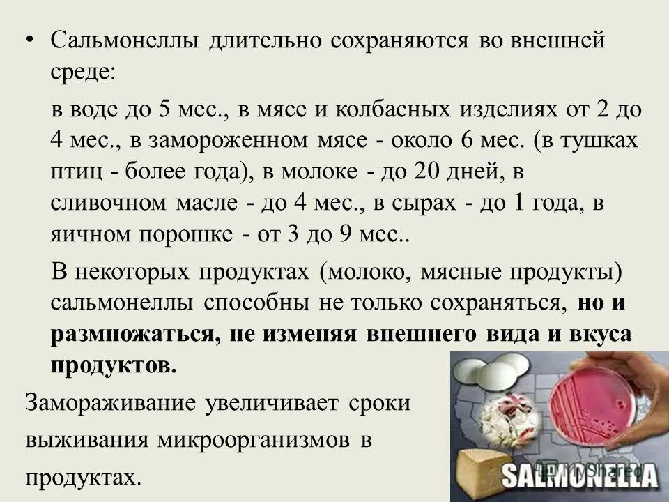 Сальмонеллы длительно сохраняются во внешней среде: в воде до 5 мес., в мясе и колбасных изделиях от 2 до 4 мес., в замороженном мясе - около 6 мес. (в тушках птиц - более года), в молоке - до 20 дней, в сливочном масле - до 4 мес., в сырах - до 1 го