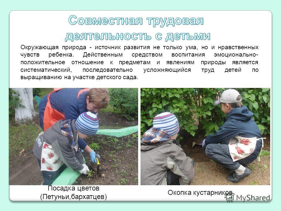 Окружающая природа - источник развития не только ума, но и нравственных чувств ребенка. Действенным средством воспитания эмоционально- положительное отношение к предметам и явлениям природы является систематический, последовательно усложняющийся труд