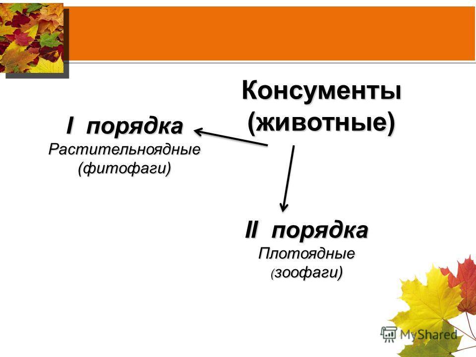 Консументы(животные) I порядка Растительноядные(фитофаги) II порядка Плотоядные ( зоофаги)